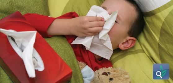 أخـطــاء شـــائـعــة نزلات البرد والإنفلونزا 513453ddaa2cbarticle_1366_1.jpg