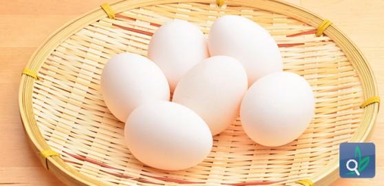 أعراض حساسية البيض وعلاجها 51418432b0d76article