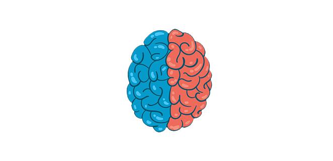 التشوه الخلقي في الدماغ