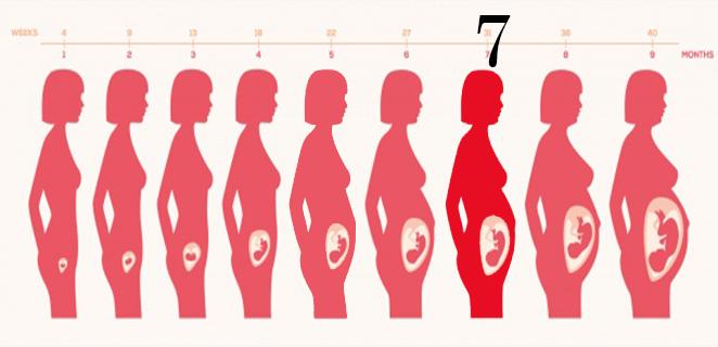 التغيرات التي تحدث للجنين خلال الشهر السابع من الحمل الطبي