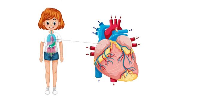 الاضطراب العصبي القلبي