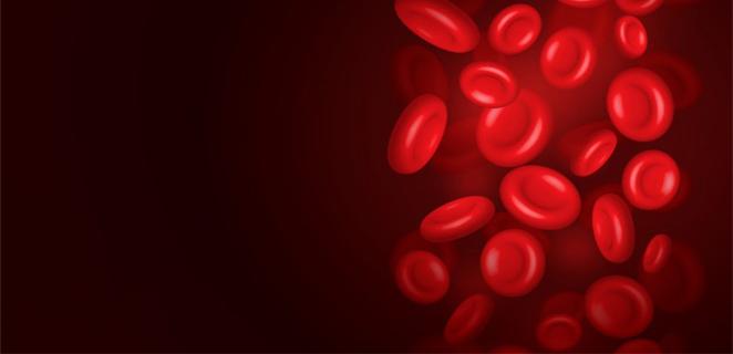كثرة خلايا الدم الحمراء الكروية