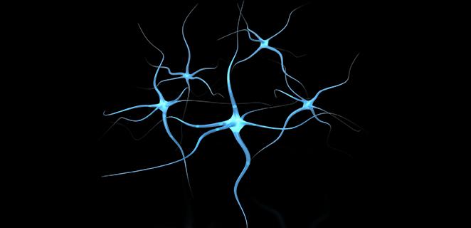 الورم العصبي الليفي