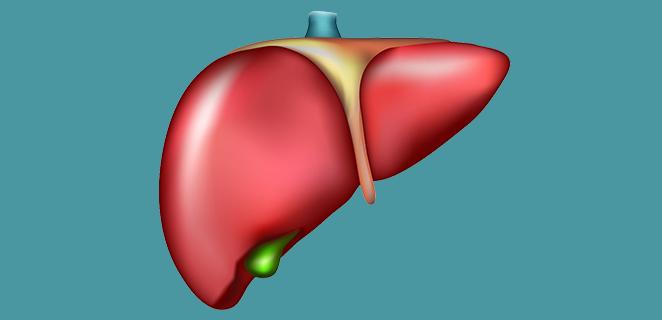النخر الكبدي