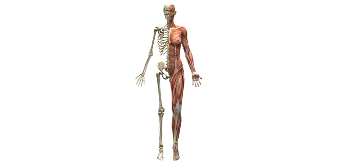 التهاب العضل القيحي