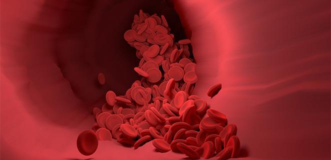 زراعة الدم