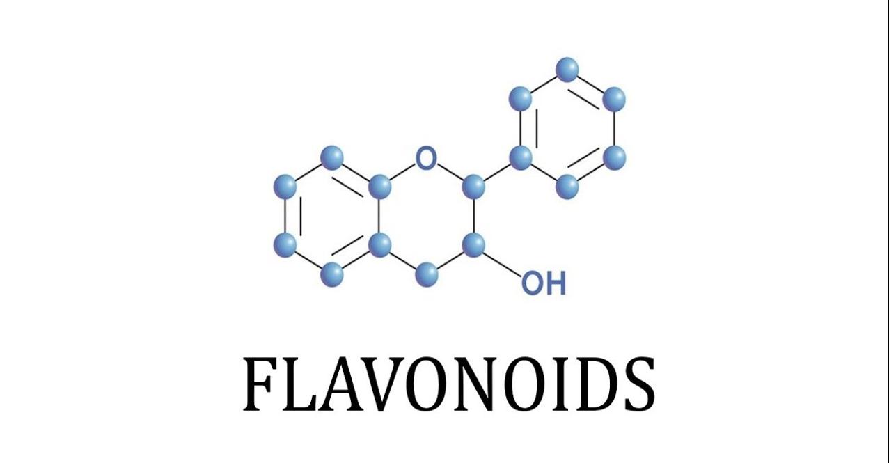 فلافونويد