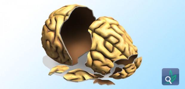 اصابات الدماغ