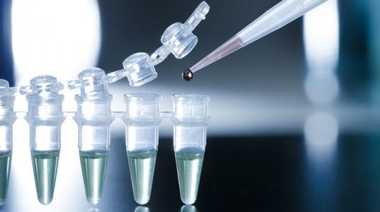 العلاج بالخلايا الجذعية