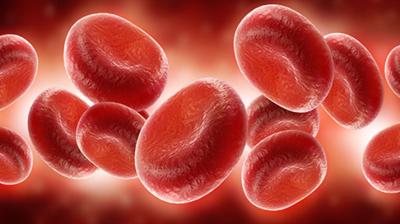 يحدث فقر الدم الناجم عن نقص الحديد او...