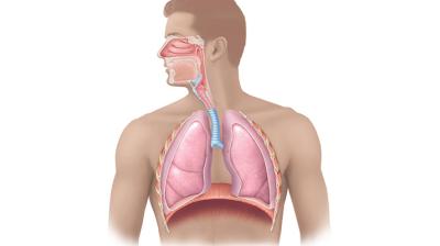 الحد من انتشار اﻻمراض التنفسية