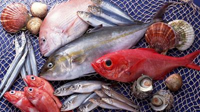 تناول الأسماك و الوزن