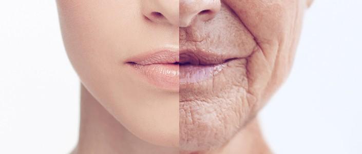 متى تبدأ مرحلة الشيخوخة ؟