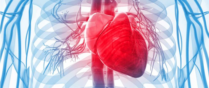 How do you know the symptoms of a heart attack?