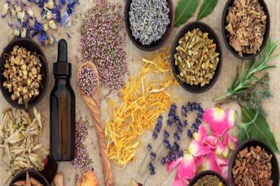 علاج الوسواس القهري بالأعشاب