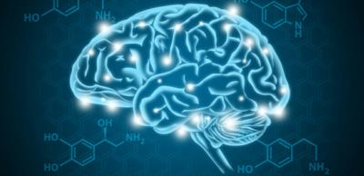 نظام المكافأة في الدماغ
