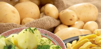 البطاطا الأفضل المسلوقة أو المشوية