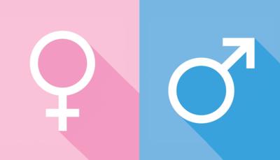 الغذاء وتحديد جنس الجنين