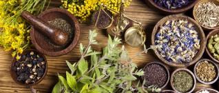 علاج السعال بالاعشاب الطبية