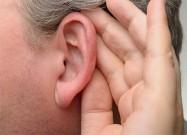 ما هي المادة التي تفرزها الأذن