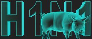 كيف تميز بين أعراض الإنفلونزا و أعراض إنفلونزا الخنازير؟ انفوجرافيك