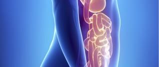 دواء جديد لمصابي متلازمة الأمعاء القصيرة