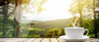 هل يمكن التخلص من الزكام الموسمي من دون أدوية؟