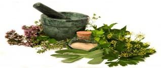علاج ارتفاع هرمون الحليب عند الرجال بالأعشاب