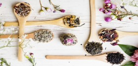 علاج الام المعدة بالاعشاب