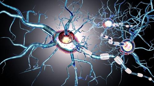 اكتشاف دواء يبطئ من انكماش المخ في التصلب المتعدد
