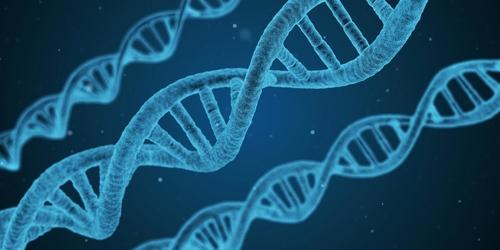 تتبع الشيفرة الوراثية البشرية: أمل جديد للمصابين بالسرطان والأمراض النادرة