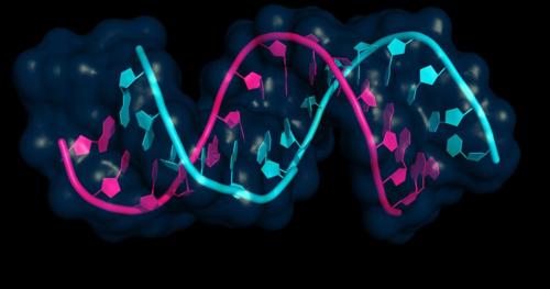 هل يمكن الكشف المبكر عن مرض السرطان في مرضى السكتات الدماغية عن طريق الجينات؟