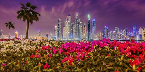 المجال الصحي في أكسبو 2020 دبي