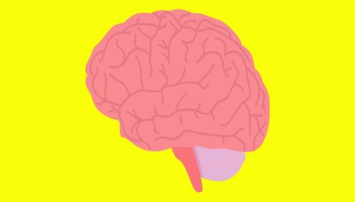 التغيرات الوظيفية والبنائية في دماغ الأشخاص المصابين بالاكتئاب