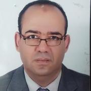 الدكتور محمد محروس التلاوى