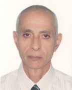 الدكتور محمد على البحراوى