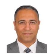 الأستاذ الدكتور تامر محمد عاطف غيته