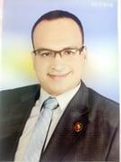 الدكتور مصطفى ابو الحسن