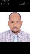 د. يوسف عبدالحليم محمد