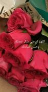 د. الهام محمد عيد