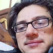 د. محمد حجاج عبداللطيف