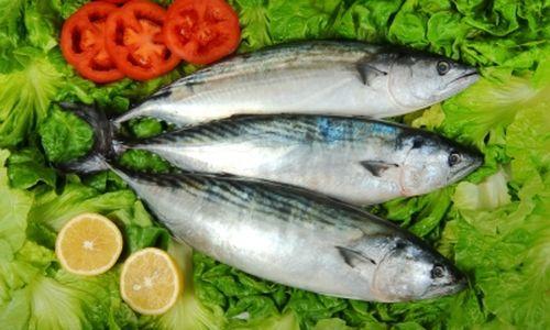 تناول الأسماك يساعد على الوقاية من فقدان البصر