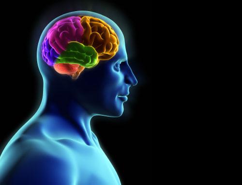 إعادة تدريب الدماغ قد تساعد مرضى الباركنسون في العلاج