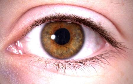 رعشة العين قد تساعد في تشخيص الشلل الرعاشي مبكرا