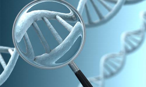 اكتشاف الجين الذي يسبب احدى انواع فقدان السمع