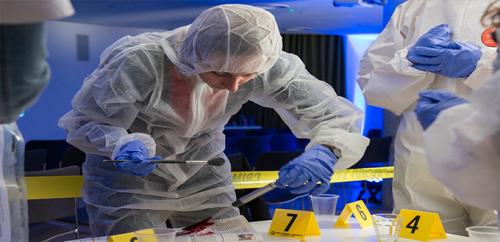 استخدام الجينات لتحديد وقت وفاة ضحايا الجرائم بدقة أكبر