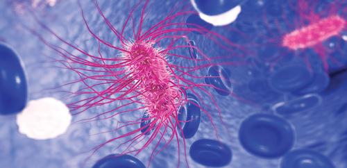 بكتيريا مرعبة مقاومة للمضادات الحيوية بدأت تنتشر