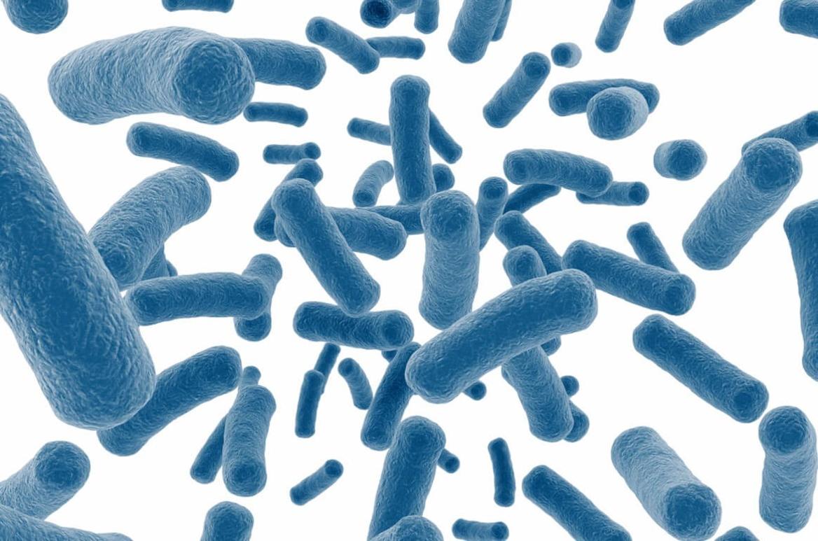 هل يقلل العلاج بالبروبابيتكس من فعالية العلاج المناعي؟
