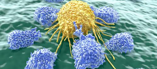 نجاح العلاج المناعي ضد سرطان الثدي القاتل