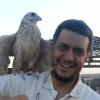 عماد يس سعد الدين